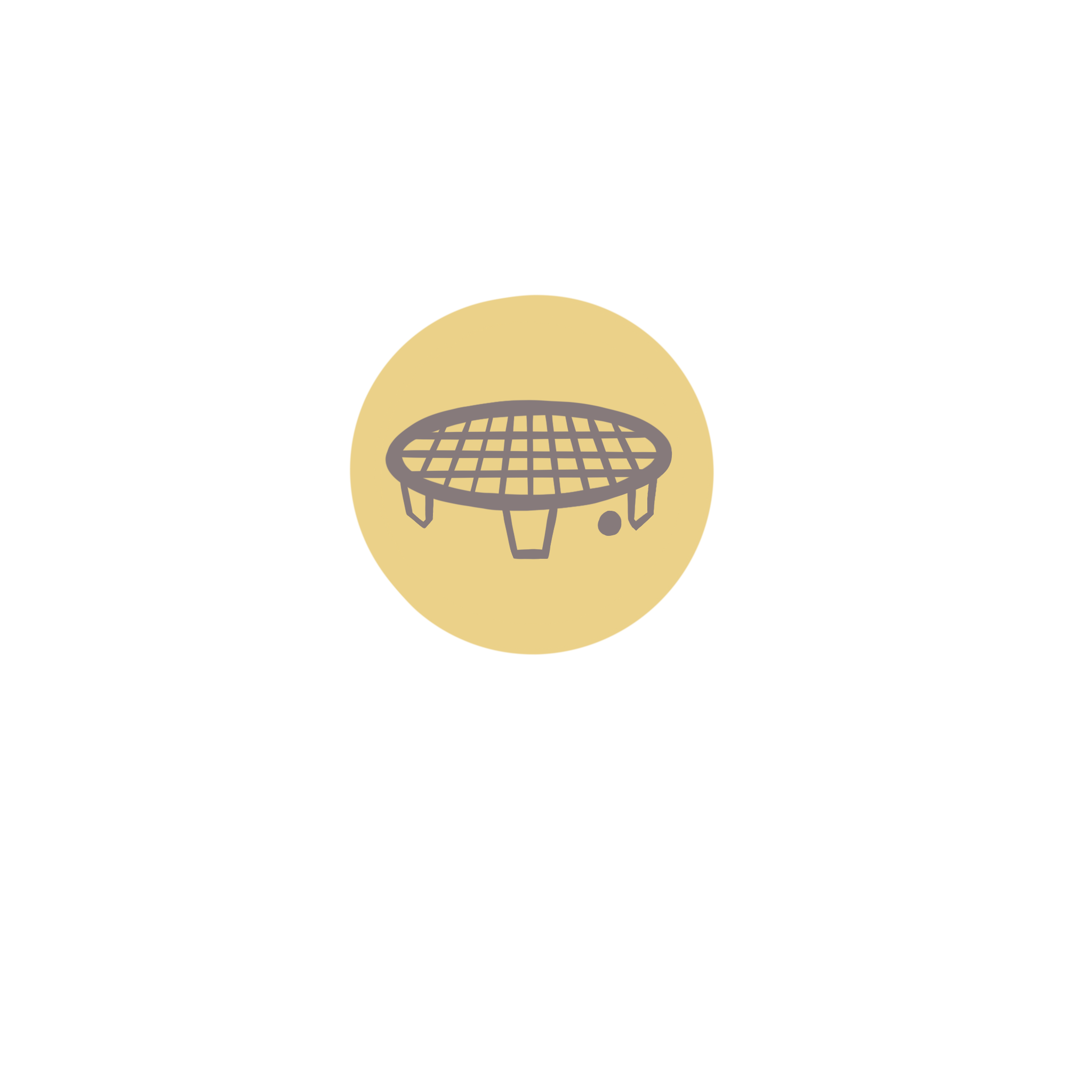 illustration of a spikeball net